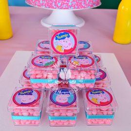 Kit festa infantil Peppa Pig-Caixinhas acrílicas