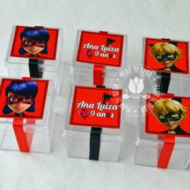 Kit festa infantil Miraculous Ladybug - caixinhas acrílicas
